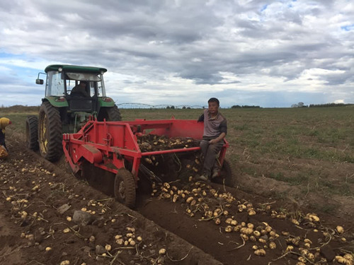 瞄准20%的规模种植生产者,理财农场是如何开发农业金融处女地的?