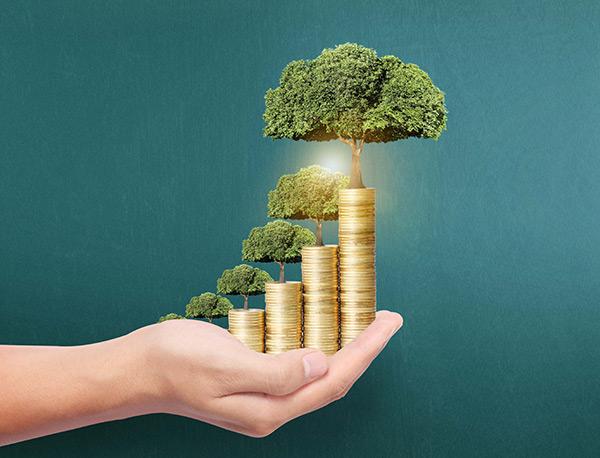 国际风投独厚中国 金融科技未来可期