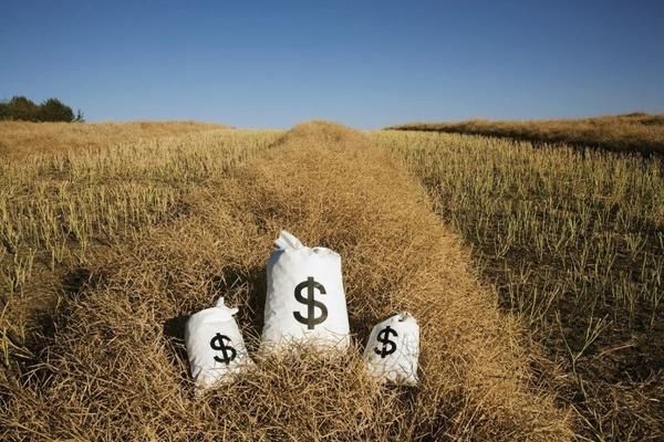 中央一号文件透露的信息 农村互联网金融或遭新洗牌?
