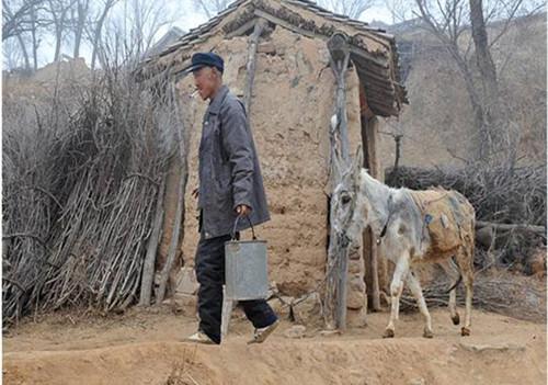 中央一号文件:鼓励金融机构创新农村金融,严厉打击农村非法集资和金融诈骗