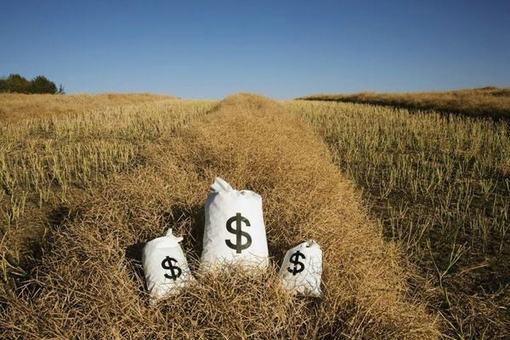 中央一号文件聚焦下,农村互联网金融将如何发展?