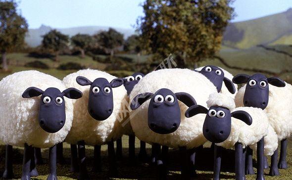 网贷平台集体反击羊毛党 从又爱又恨转至坚决反对