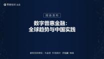 独家报告 | 数字普惠金融:全球趋势与中国实践